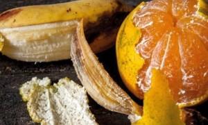 Как готовить удобрение из банана без вреда для нашего здоровья