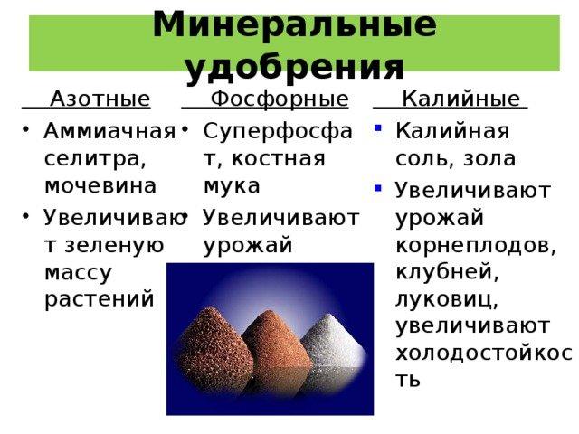 Минеральные удобрения для растений.