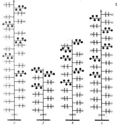 Схема расположения соцветий на стеблях томатов